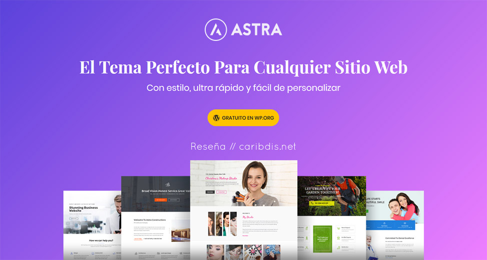 Astra suspendido del repositorio de temas de WordPress.org