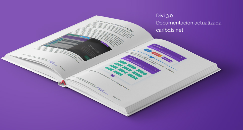 Divi - Documentación - Manual