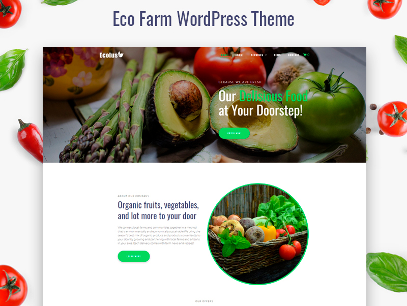Tema De WordPress Ecolus - Organic Food Delivery ECommerce Modern Elementor